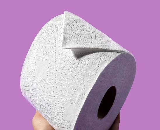 best-toilet-papers-quilted-northern-detail